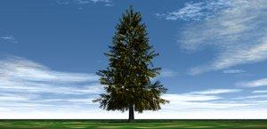 pine tree christmas 3D