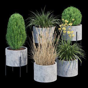 3D cylinder flowerpot linea model