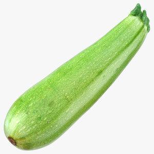 zucchini cousa squash 3D model