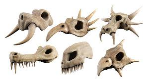 skull set 3D model