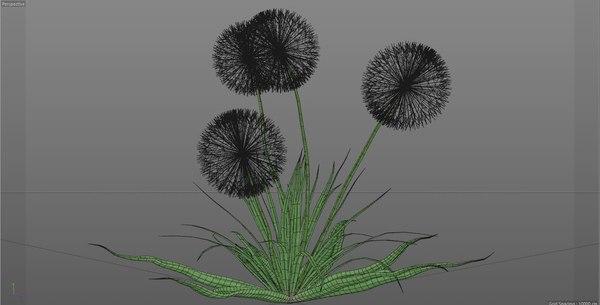 3D flower dandelion white