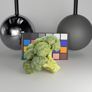 3D scanned cob broccoli