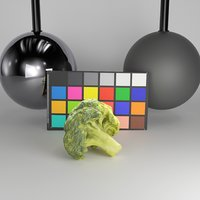 3D scanned broccoli model