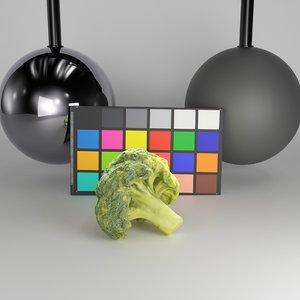 3D scanned broccoli model