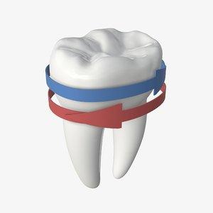 3D tooth molar arrow