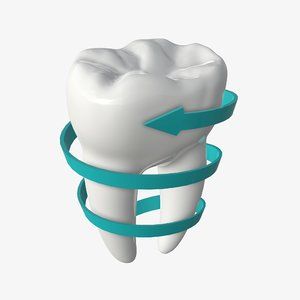tooth molar arrow 3D model