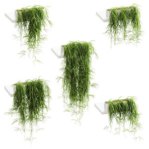 hanging plants shelves 5 3D