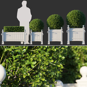 boxwood planter 3D model