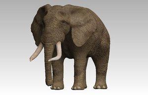 3D model rigged elephant