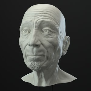 3D model old man head