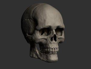 skull male american model