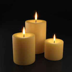 holiday burning candles 3D model