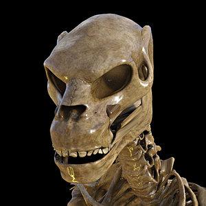 zeth skeleton midnight genesis 3D model