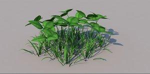 grass clover 3D model