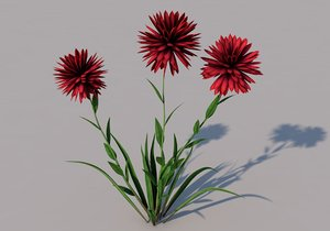 3D flower pisacan model