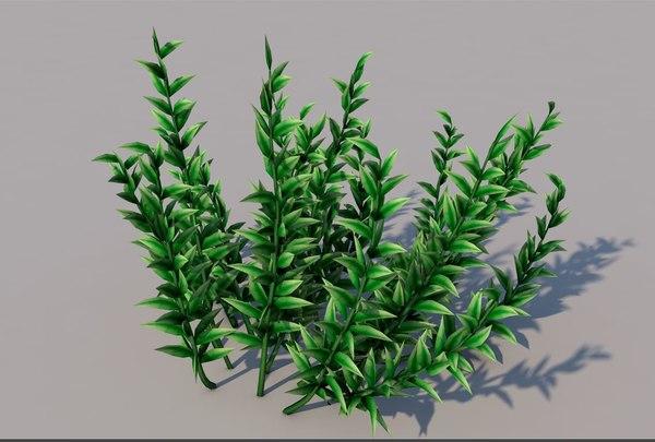 knotweed grass 3D model