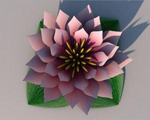 water lily flower 3D model