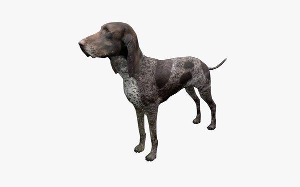 3D dog animation model