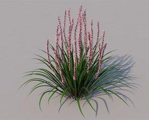 3D flower lily turf model