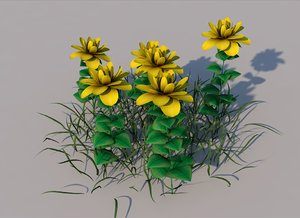 3D flower wide leaf