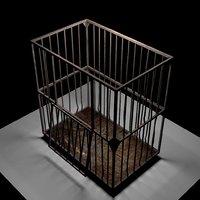 Aslyum Cage Model