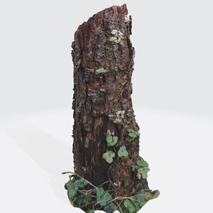3D photorealistic peach treetrunk