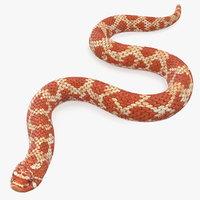 3D red hognose snake crawling model
