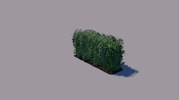 hedges model