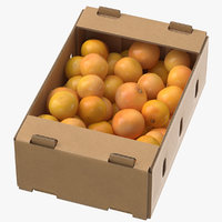 Cardboard Display Box 01 with Grapefruits