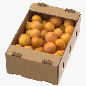 cardboard display box grapefruits 3D