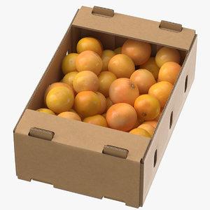 cardboard display box grapefruits 3D