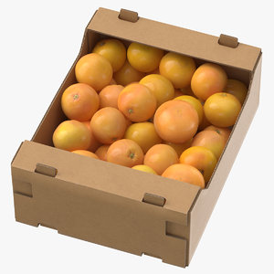 cardboard display box grapefruits 3D model