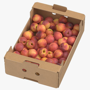 cardboard display box peaches 3D model
