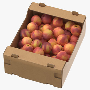 3D cardboard display box peaches model