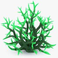 seriatopora big coral model