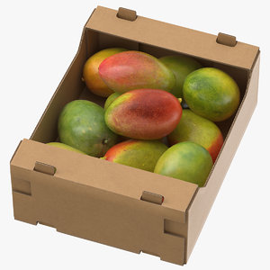 cardboard display box mangos 3D model