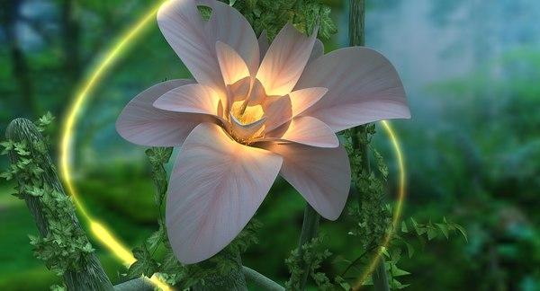 3D plant flowering landscape