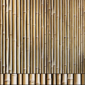 3D model bamboo wall pattern