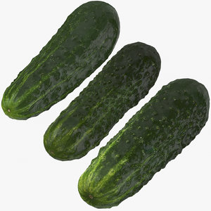kirby cucumbers 02 3D model