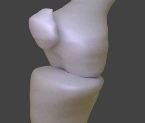 knee bone 3D model