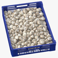 3D model postharvest fruits tray white