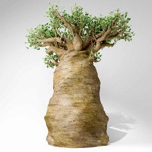madagascan baobab tree 3D