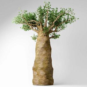 3D madagascan baobab