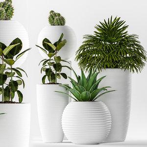 plants 262 3D model