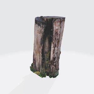 treestump bark 3D