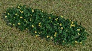trees plants 3D model