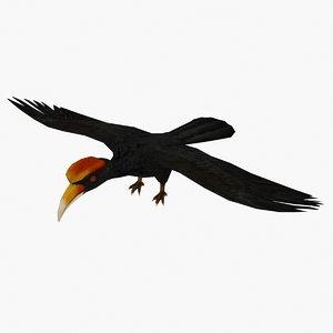hornbill type 01 3D model