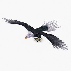 3D bald eagle type 01