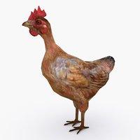 chicken type 01 3D
