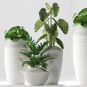 3D plants 260 indoor model